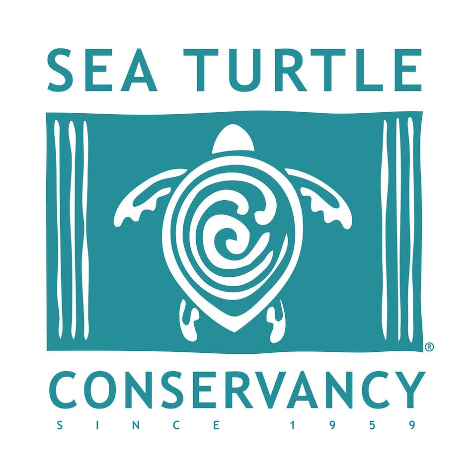 Pura Vida Stackable Bracelet Save The Sea Turtles Pack