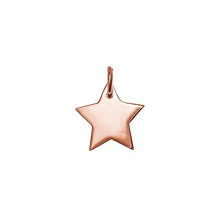 Rose Gold Star Charm