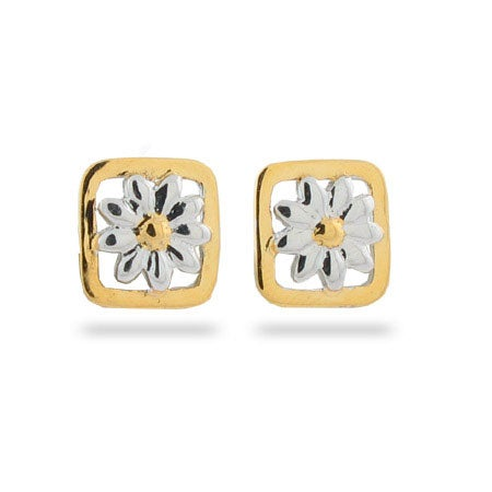 Designer Style Nature Daisy Stud Earrings in a Gold Border