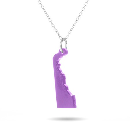 Delaware Acrylic State Necklace | Eve's Addiction®