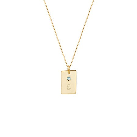 Birthstone and Initial Petite Gold Vertical Rectangle Necklace