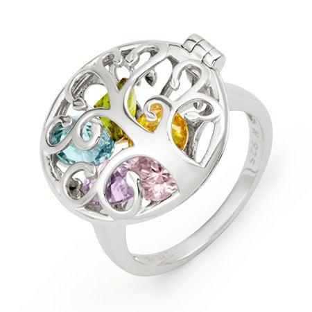 Family Birthstone Silver Locket Ring | Eves Addiction