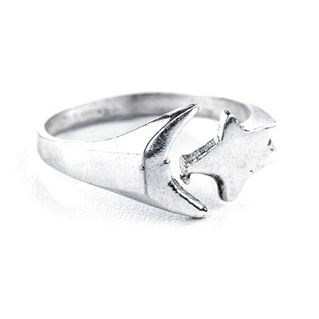 Moon and Star Silver Toe Ring | Eve's Addiction®
