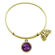 Wind and Fire February Swarovski Birthstone Charm Gold Bangle Bracelet