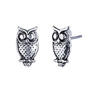 Owl Stud Earrings in Sterling Silver