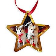 Personalized Holiday Star Photo Ornament