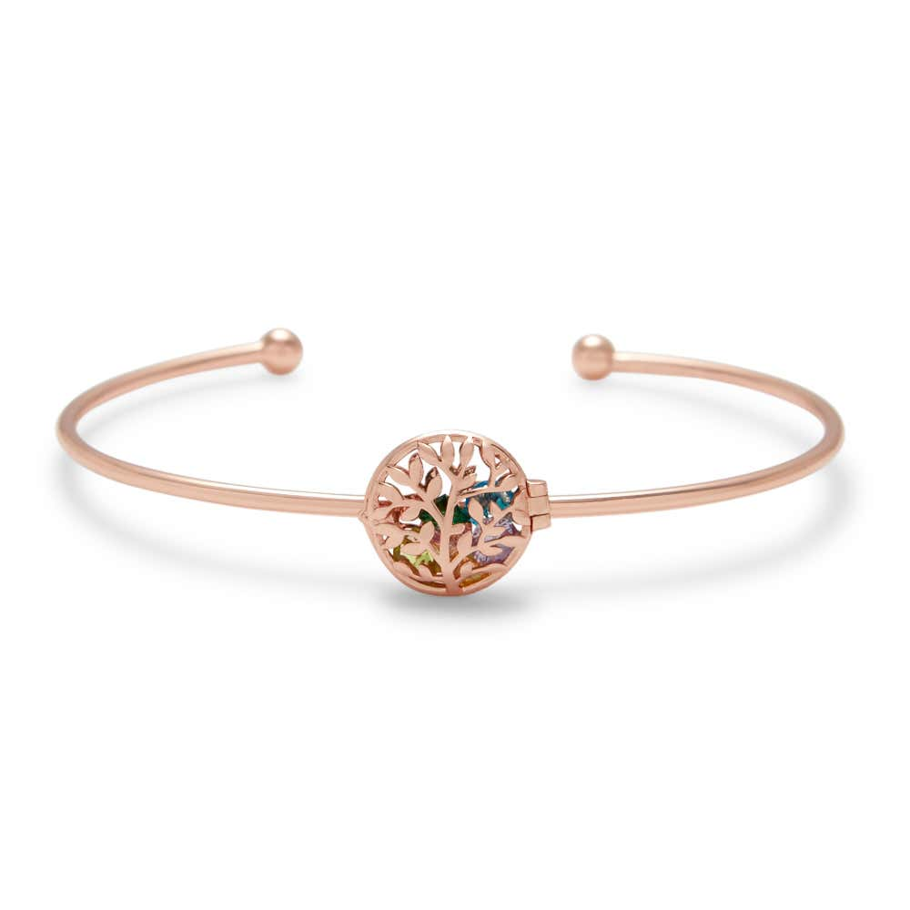 Family Tree Rose Gold Birthstone Locket Bracelet