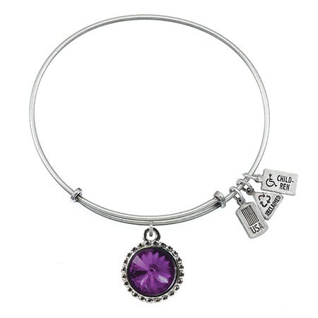 Wind & Fire February Swarovski Birthstone Charm Bangle Bracelet in Silver | Eve's Addiction®