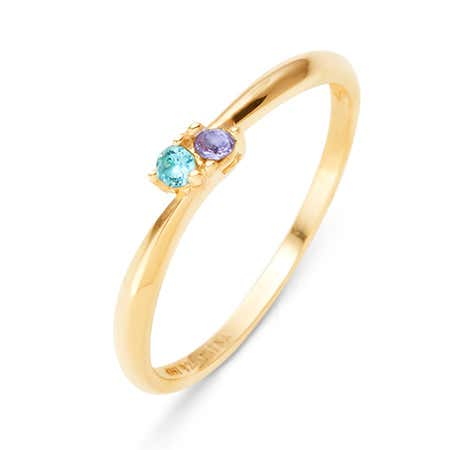 Petite 2 Stone Gold Ring