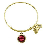 Wind and Fire January Swarovski Birthstone Charm Gold Bangle Bracelet