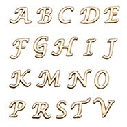 Floating Locket Gold Initial Charms