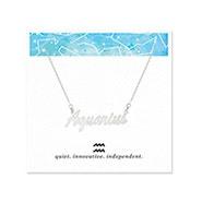 Aquarius Zodiac Silver Nameplate Necklace