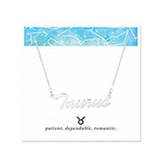 Taurus Zodiac Silver Nameplate Necklace