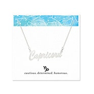Capricorn Zodiac Silver Nameplate Necklace