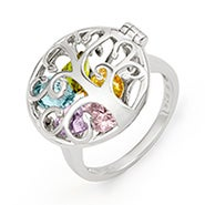 Family Tree Birthstone Silver Locket Ring